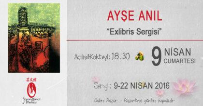 03 JSM Exhibition ayse_anil